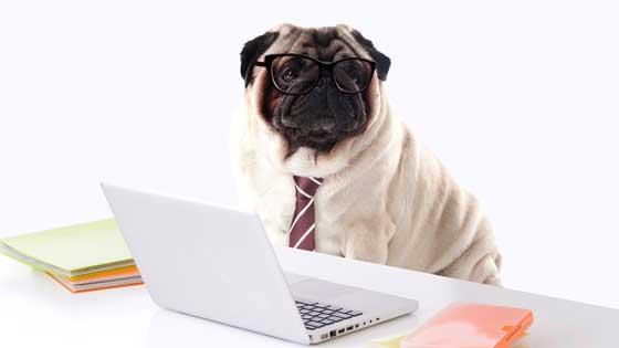 ネットショップ始めるなら必須の「特定商取引法に基づく表記」を知る